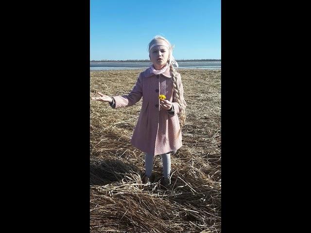 Изображение предпросмотра прочтения – ДарьяЗуева читает произведение «Весенние воды (Еще вполях белеет снег…)» Ф.И.Тютчева