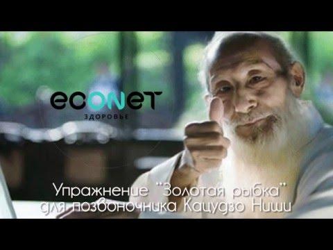 Упражнение Золотая рыбка для позвоночника Кацудзо Ниши  - econet.ru