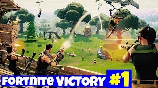 *NEW* CRAZY 20 PERSON TEAM MODE In Fortnite Battle Royal