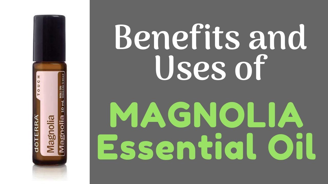 MAGNOLIA Essential Oil Benefits and Uses