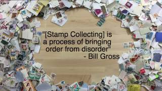 Sorting and Organizing Stamps