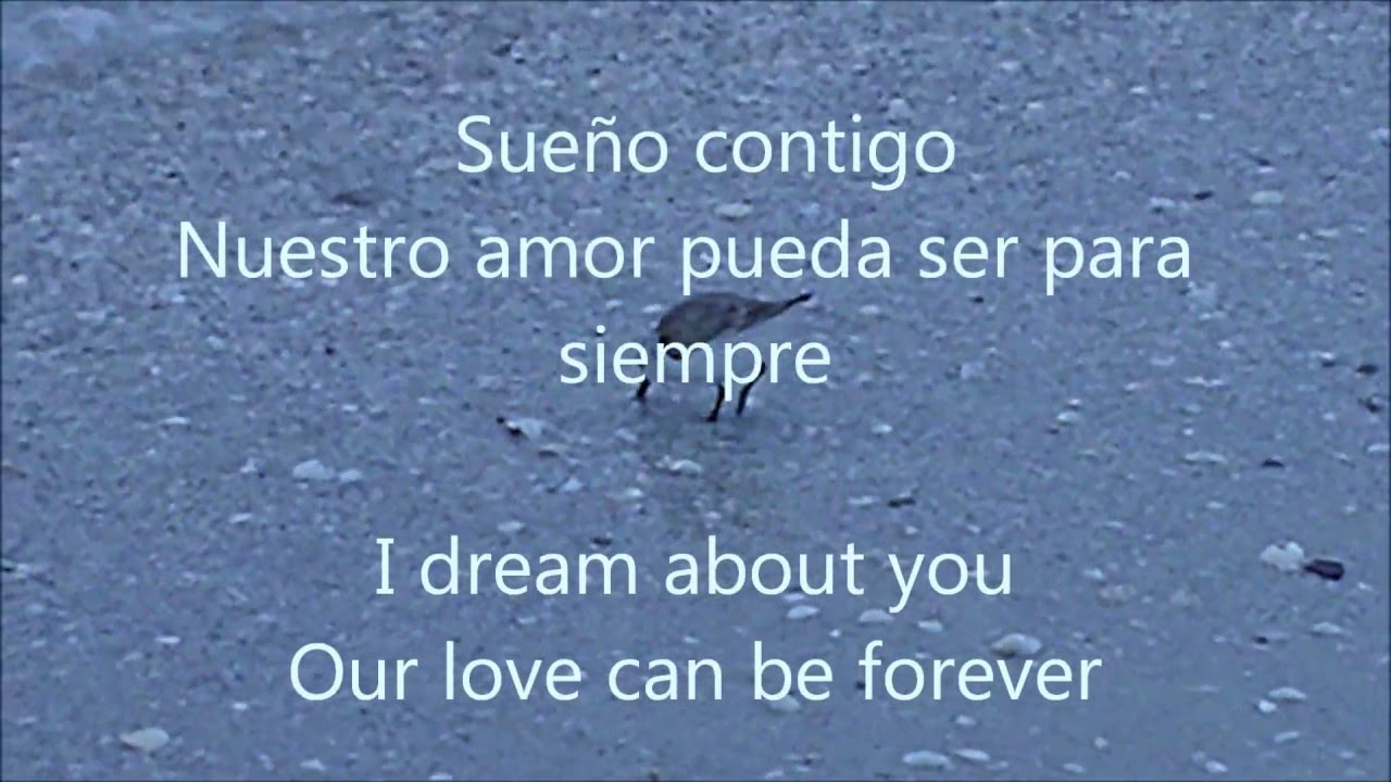 Poem In Spanish Lyrics In Spanish And English