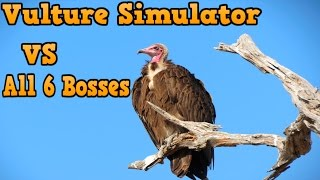 👍🦅Vulture Simulator VS All 6 Bosses -USS- By Gluten free Games -W/Commentary - iTunes/Android