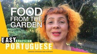Baixar In a Brazilian garden | Easy Brazilian Portuguese 46