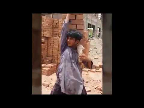 Pakistan Labor Hard working Transfer Bricks from Other Place