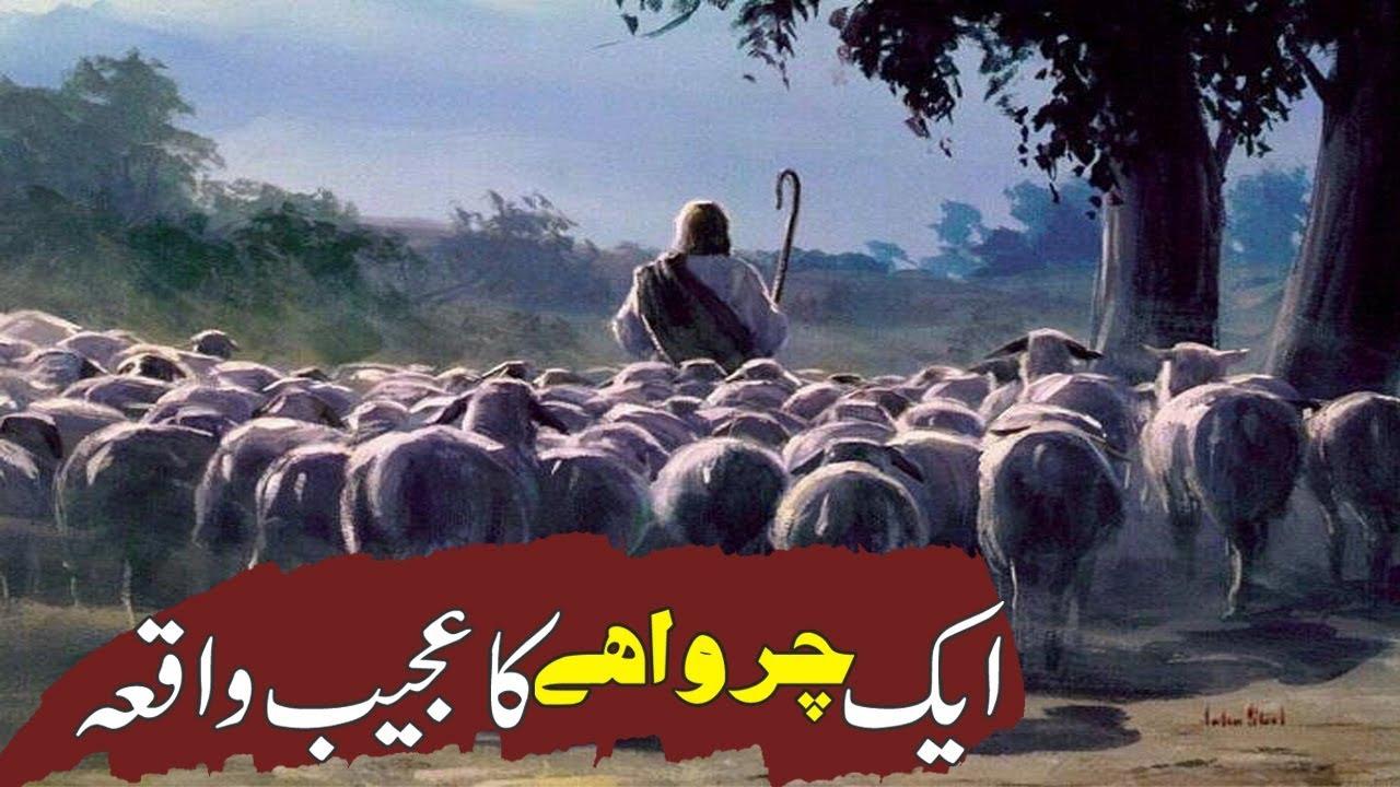 Download Aik Charwahy Ka Waqya | Nabi Pak SAW Ka Mojza | Islamic Stories Rohail Voice
