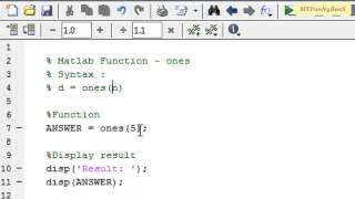 Matlab Functie - reeks 1-degenen( )
