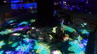 Scene from 'Penguin Candy' projection mapping at Sumida Aquarium [RAW VIDEO]