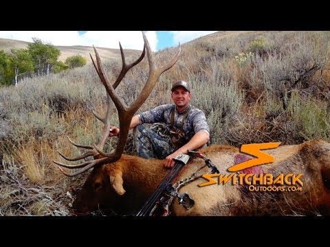 DIY Archery Elk Hunting - Switchback Outdoors