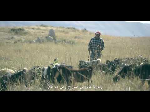 BLOM BANK - Demining 2018 - The Shepherd