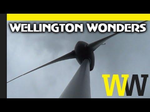 Brooklyn Wind Turbine | WELLINGTON WONDERS