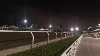 Santa Anita returns to workouts on main track