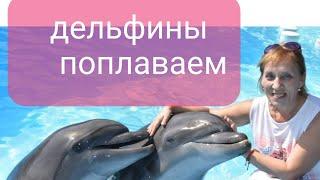 Шарм эль Шейх 2020 Ноябрь Чудо чудесное Дельфины