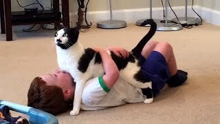 Baby and Cat are Best Friends 😽 Funny Pets Videos