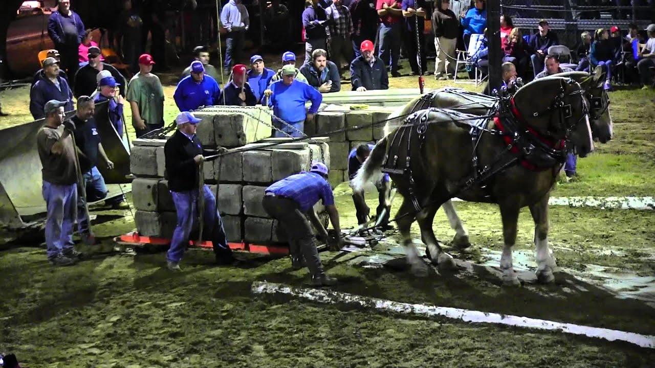 Download Draft Horse Pull 2013 Deerfield Fair NH Pulling Video 54