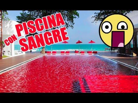 Top 10 piscinas m s incre bles y grandes del mundo youtube for Albercas baratas y grandes