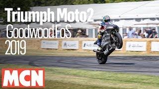 Triumph Daytona 765 Moto2 run at Goodwood FoS 2019 | MCN | Motorcyclenews.com