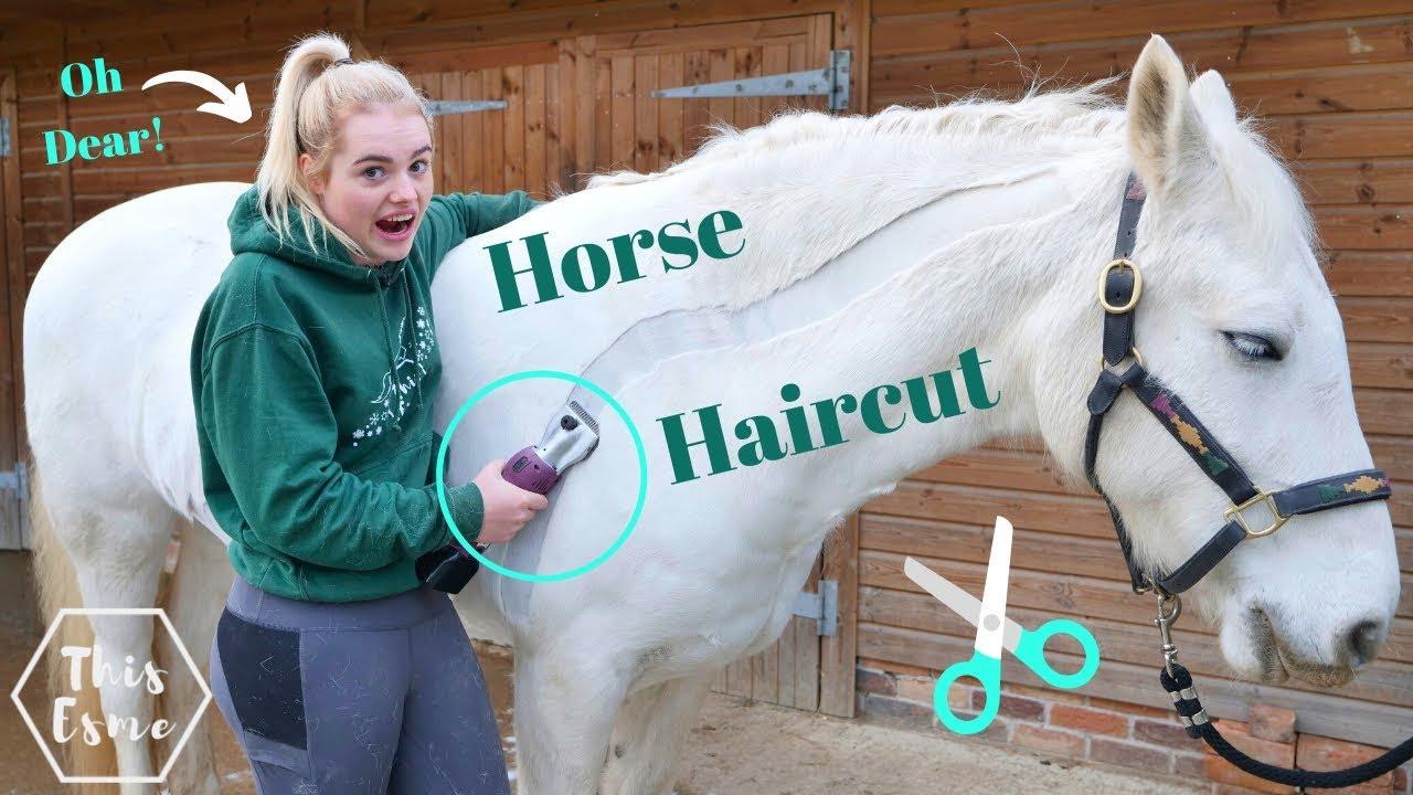 HORSE HAIRCUT | Clipping my horse MYSELF! Again! Oh Dear.. | This Esme