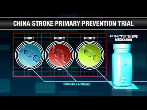 Folic Acid for Stroke Prevention in Hypertension