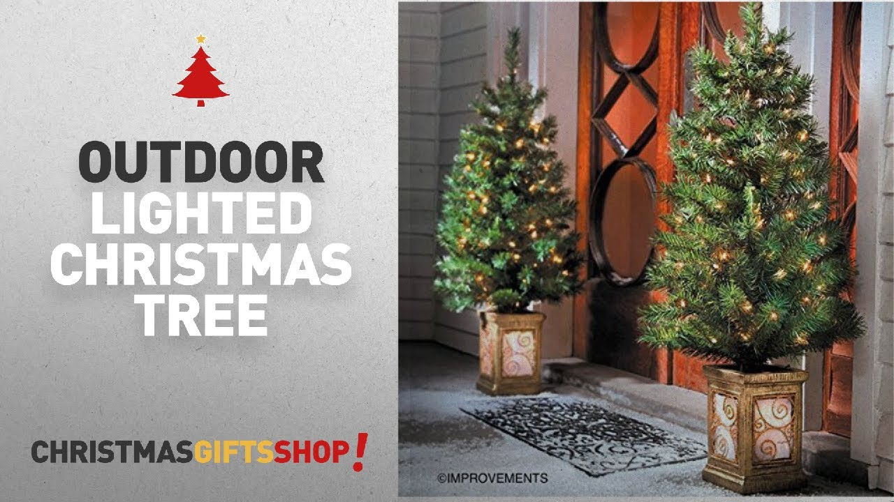 Most Popular Outdoor Lighted Christmas Tree: 4 Ft Pre-Lit