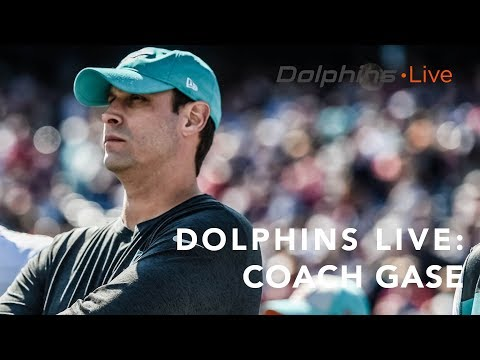 Coach Gase is focused on the Lions | Miami Dolphins