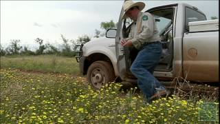 PBS October 27-November 2, 2013, #2202 -Texas Parks and Wildlife [Official]