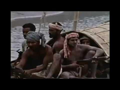 Bangladesh Liberation War in Brief