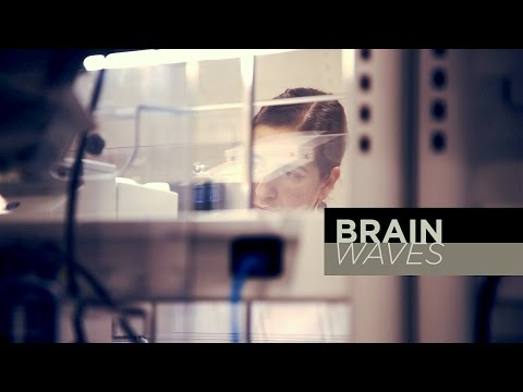 Brain Waves: Sorting cells with genes