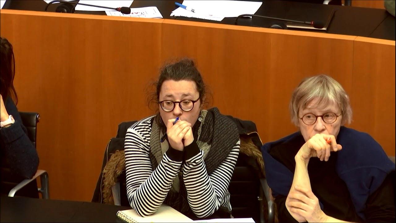 Jeudi de l'Hémicycle - François-Xavier Ullens (La Coupole)