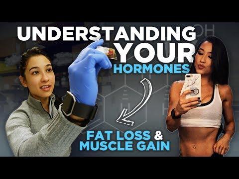 Understanding Your Hormones For Fat Loss & Muscle   The Women's Series Ep. 2