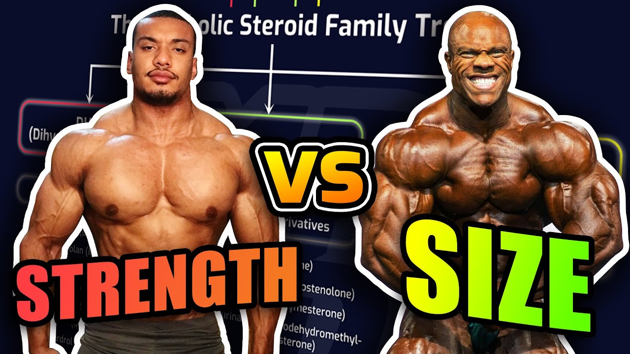 Powerlifter Vs. Bodybuilder Steroid Cycles - How They Differ