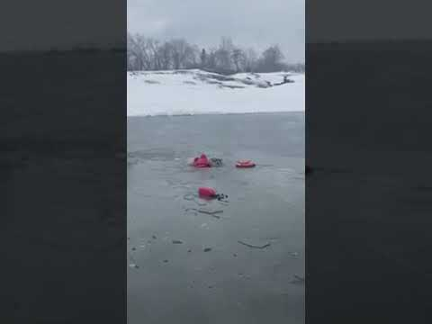 An Eastchester firefighter braved an icy pond to help come to the rescue of a beloved family pet.