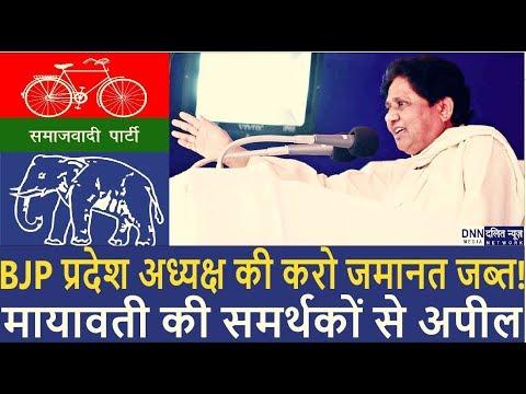 'BJP प्रदेश अध्यक्ष को हराओ'   MAYAWATI की गठबंधन समर्थकों से अपील   DALIT NEWS