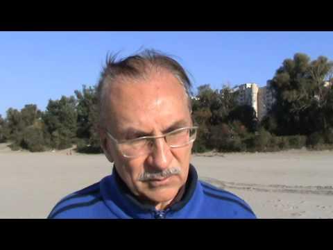 Академик В.В. Литвин о происхождении обычного песка
