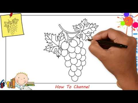How To Draw A Bunch Of Grapes Easy Step By Step For Kids Beginners 2 Youtube