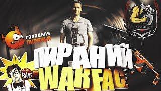 STREAM WARFACE Пираний Скифы-Squezzers приходите 18+