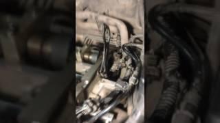 Замена ремня ГРМ форд Фокус 1.6
