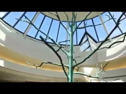 George Bush International Airport Flat Earth and Tree of Life thumbnail