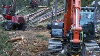 Forestry on steep slope