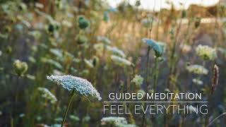 FEEL EVERYTHING: 10 Minute Guided Meditation | A.G.A.P.E. Wellness