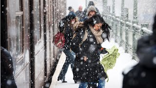 Northeast Blizzard 2015 (Historic Snowstorm Shuts Down New York)