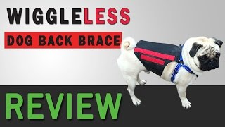 Wigglleless Back Brace Review