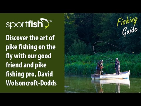 Guide To Fly Fishing For Pike With David Wolsoncroft-Dodds