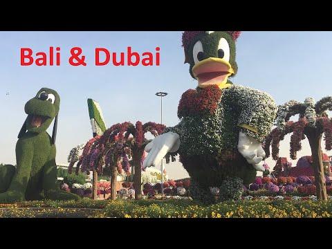 Bali & Dubai 2019 | Burj Khalifa | Ferrari world | ButterflyGarden | Miracle Garden!!