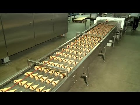 Success Stories 2014 - Haas Food Equipment GmbH