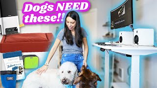 Work at Home? MAKE IT PET FRIENDLY!  DIY Dog Friendly Home Office Makeover