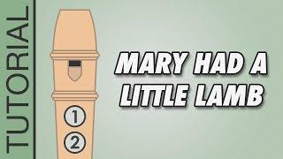 Video Mary Had a Little Lamb - Recorder Notes Tutorial - Easy Songs download MP3, 3GP, MP4, WEBM, AVI, FLV Oktober 2018
