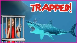Trapped in a SHARK CAGE!