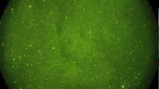 Night Vision Astronomy HD