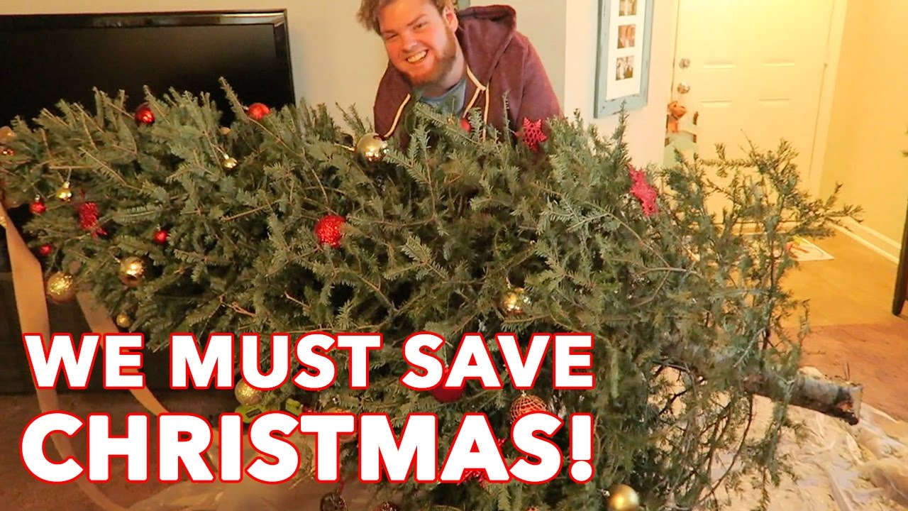 CHRISTMAS TREE IS DYING!